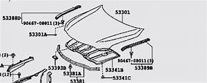 2003 Toyota Camry Body Parts Diagram