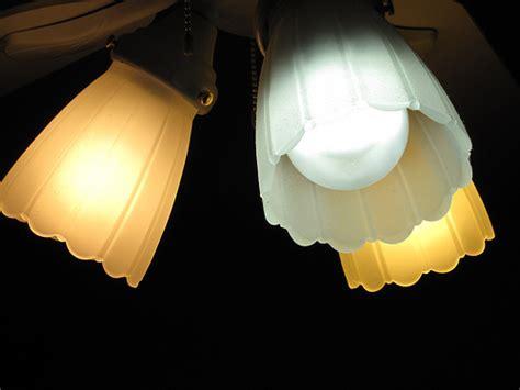 the light bulb showdown leds vs cfls vs incandescent