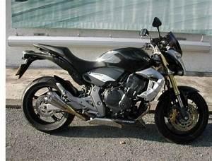 Petite Moto Honda : honda hornet cb la rochelle moto scooter v lo motos ~ Mglfilm.com Idées de Décoration