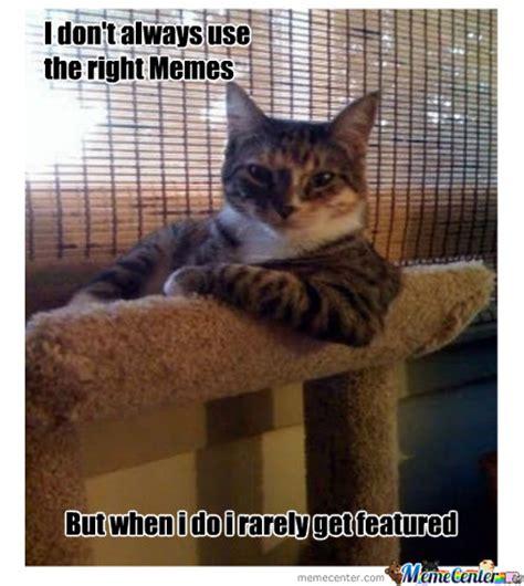Interesting Meme Most Interesting Cat By Sound 5 Meme Center