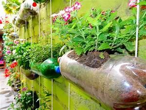 A Simple Home Made Garden