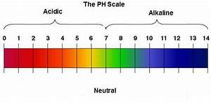 Ph Electrodes Information