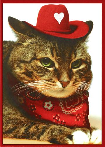 Cat With Cowboy Hat And Bandana Funny Valentines Day Card