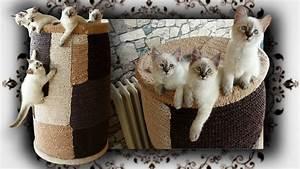 Gemüse Für Katzen : diy kletter tonne f r katzen scratching barrel condo ~ Watch28wear.com Haus und Dekorationen