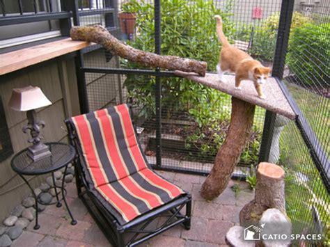 catios cat enclosures catio spaces