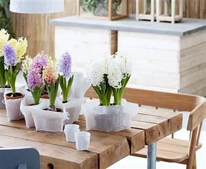 Creation Avec Des Pots De Fleurs : 5 fa ons de mettre en sc ne les jacinthes pour no l ~ Melissatoandfro.com Idées de Décoration
