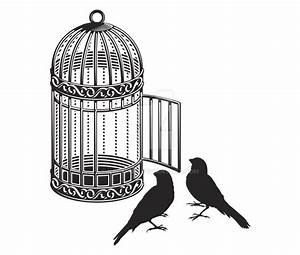 Open Bird Cage Drawing | www.imgkid.com - The Image Kid ...