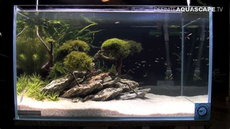 how to make an aquascape aquascaping aquarium ideas from zoobotanica 2013 pt 6