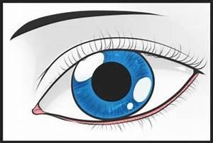 Dessin Facile Yeux : comment dessiner un oeil allodessin ~ Melissatoandfro.com Idées de Décoration