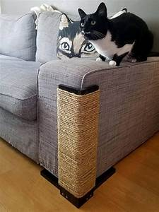 sofa cat protectors sofa cat scratch protectors www With sofa arm covers cat