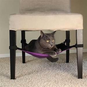Haustiere Für Die Wohnung : katzen h ngematte auch f r die kleine wohnung h keln und n hen f r die katze und den hund ~ Frokenaadalensverden.com Haus und Dekorationen