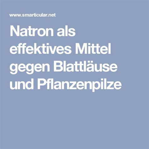 mittel gegen pilze im garten natron als effektives mittel gegen blattl 228 use und pflanzenpilze garten