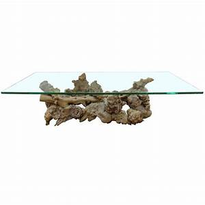 burl and driftwood glass top coffee table for sale at 1stdibs With driftwood coffee table with glass top