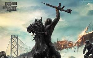 Dawn of the Planet of the Apes Movie Wallpapers | HD ...