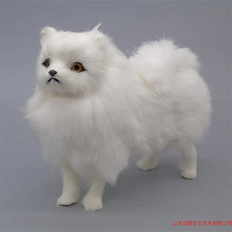 popular pomeranian white buy cheap pomeranian white lots