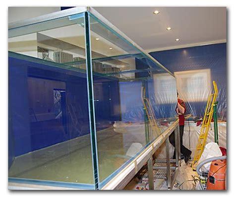 instalation d un aquarium en deux jours