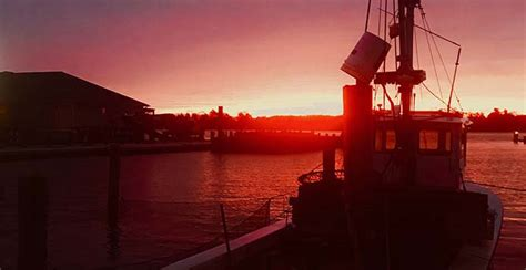 photo week southpaw sunrise chesapeake bay foundation