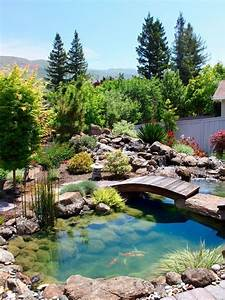 30, Elegant, Backyard, Pond, Ideas