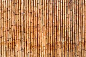 Dry bamboo wood background Stock Photo Colourbox