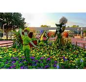 The Epcot International Flower & Garden Festival Begins