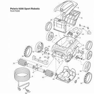 Hayward Motor Wiring Diagram Within Diagram Wiring And