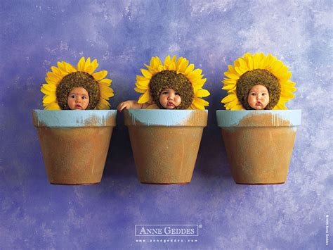 geddes flower pot babies geddes baby wallpapers prints desktop wallpaper