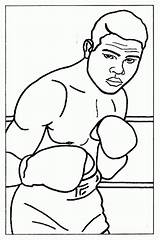 Boxer Coloring Boxing Pages Joe Louis Sheet Sheets Printable Olympic Books Template Dog Cute Clip Puppy Popular Realistic Library Clipart sketch template