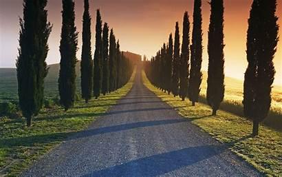 Italian Road Estate Italy Wallpapers
