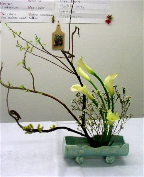 step by step flower arranging for beginners california academy クラス