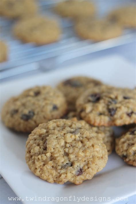 Oatmeal Raisin Cookie Recipe » Dragonfly Designs