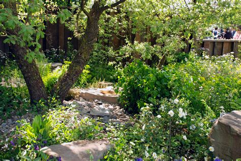 the m g garden rhs chelsea flower show forest of dean stone