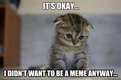 Sad Ok Meme - sad kitten memes quickmeme