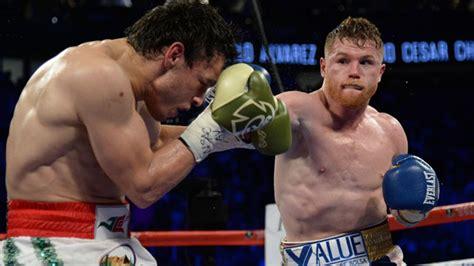 canelo alvarezs  career knockouts  huge