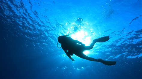 scuba diving wallpaper wallpapertag