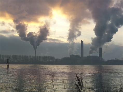 contaminacion ambiental factor cancerigeno en humanos