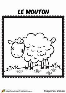 Dessin Colorier Dun Mouton Souriant Coloriages
