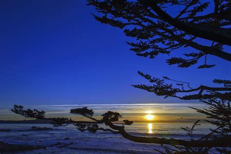 Monterey Bay Aquarium Cannery Row Monterey Ca Usa