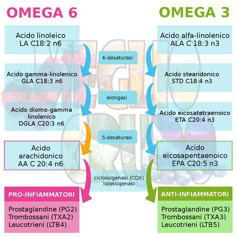 omega 3 e 6 alimenti omega 3 e alimentazione a base vegetale antinfiammatoria