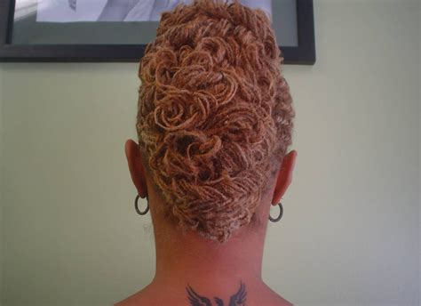 sisterlocks french roll bun    thirstyroots