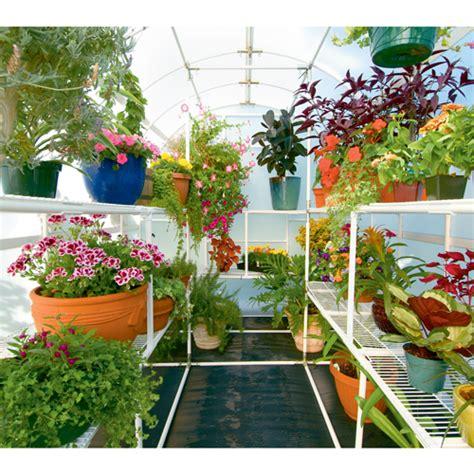 home gardening tips to help beginners uk living