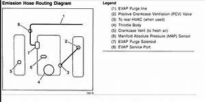 Vacuum Hose Diagram  I Have Removed The Vacuum Hoses From