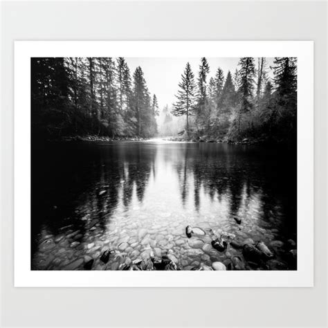 Forest Reflection Lake Black White Nature Water