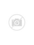Leopard face   Face Pa...