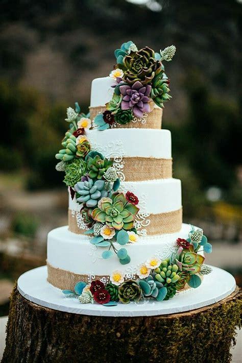 stunning succulent wedding cakes inspired  nature