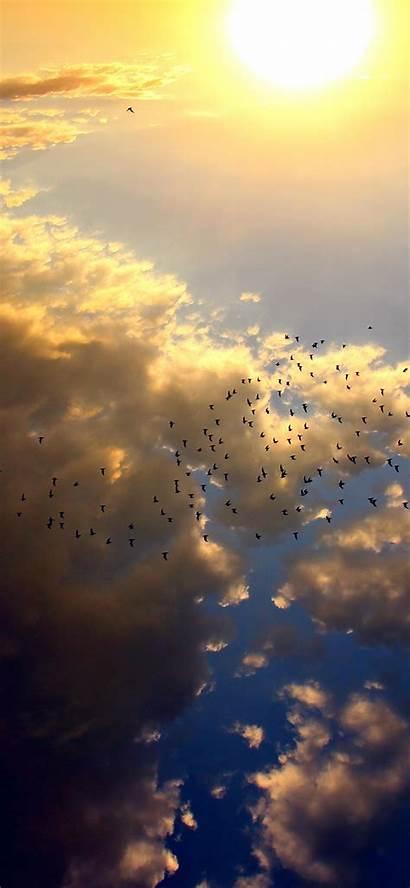 Sun Summer Sky Nature Bird Fly Iphone