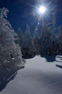 Mount LeConte Smoky Mountains http://www ...