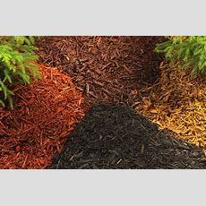 10 Types Of Mulch Choose The Right One For Your Landscape