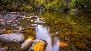 Small, Waterfall, Pond, Stones, Gravel, Autumn, Yellow, Leaf, Rocks, Covered, With, Moss, Hd, Wallpaper, For