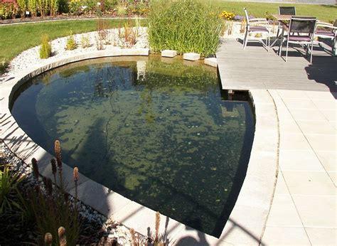 Schwimmteiche Für Kleine Gärten by Schwimmteich Anlegen Worauf Kommt Es An