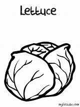 Coloring Lettuce Popular Library Clipart Clip sketch template